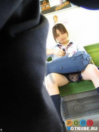 подюбкой у японки фото